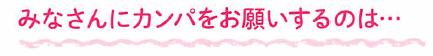 2014_supporter_leaf3